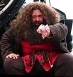 Hire Hagrid, Potter character